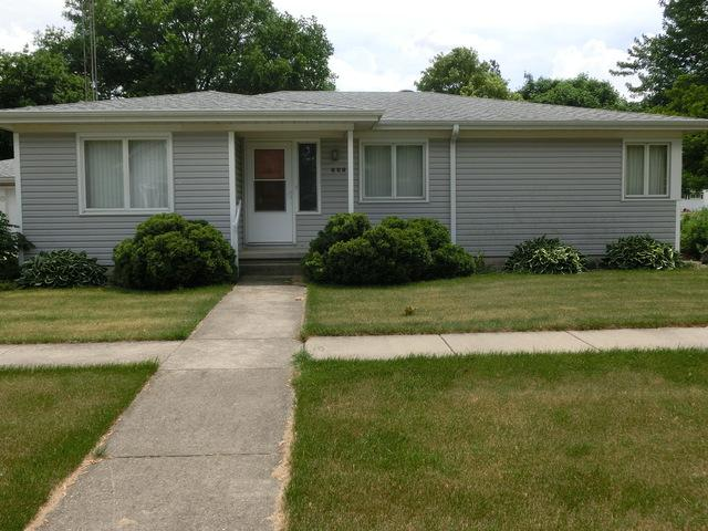 202 E South Street, Peotone, IL 60468 (MLS #09969416) :: The Dena Furlow Team - Keller Williams Realty