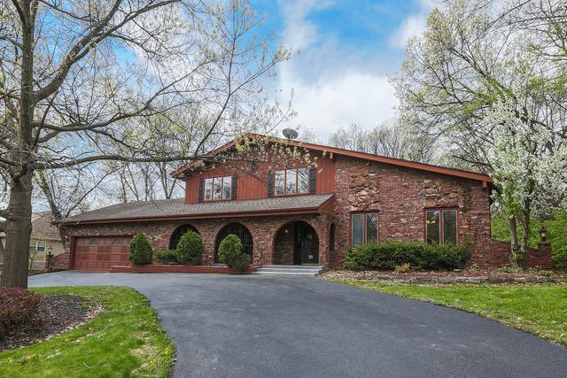 16210 Oak Valley Trail, Homer Glen, IL 60491 (MLS #09969631) :: Lewke Partners