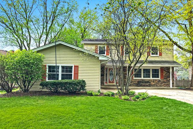 44 Waxwing Avenue, Naperville, IL 60565 (MLS #09969779) :: Lewke Partners