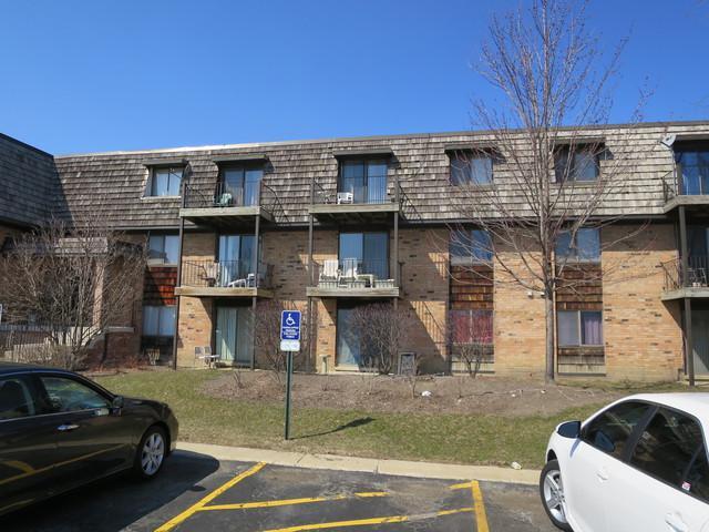 10 Oak Creek Drive #3015, Buffalo Grove, IL 60089 (MLS #09969877) :: Lewke Partners