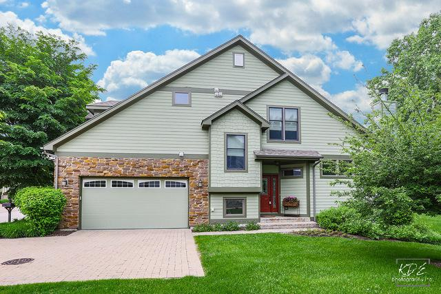 13206 S Lake Mary Drive, Plainfield, IL 60585 (MLS #09970030) :: Lewke Partners
