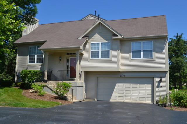 2683 N Augusta Drive, Wadsworth, IL 60083 (MLS #09971610) :: The Dena Furlow Team - Keller Williams Realty
