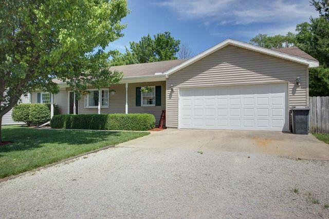 111 Schoolview Street, HOMER, IL 61849 (MLS #09974368) :: Littlefield Group