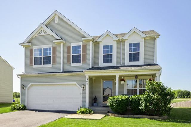 348 Coneflower Drive, Minooka, IL 60447 (MLS #09974840) :: The Dena Furlow Team - Keller Williams Realty