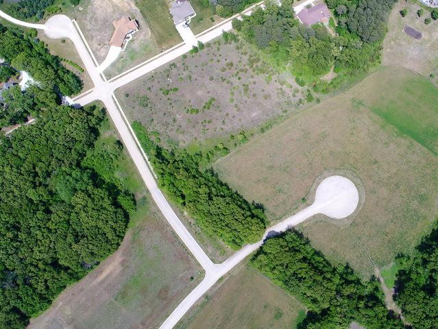 260 Norfolk Way, Essex, IL 60935 (MLS #09974931) :: The Saladino Sells Team
