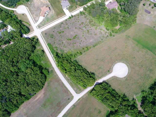 248 Norfolk Way, Essex, IL 60514 (MLS #09974934) :: The Saladino Sells Team