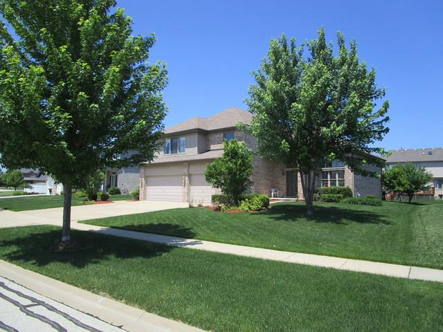 9241 Keswick Drive, Woodridge, IL 60517 (MLS #09975705) :: The Dena Furlow Team - Keller Williams Realty