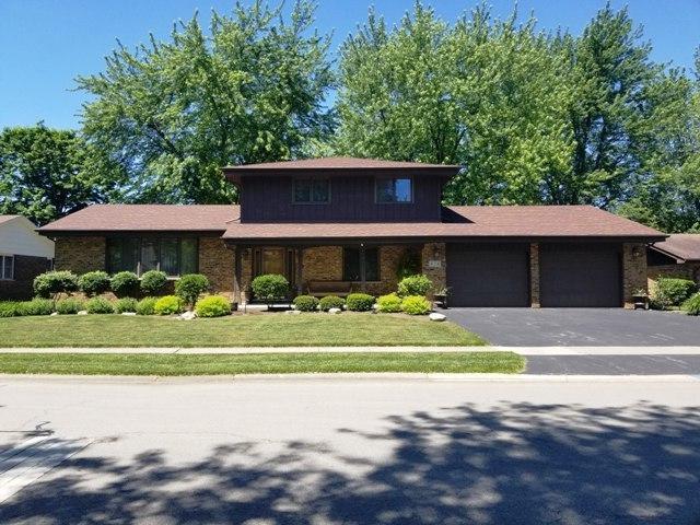 828 Catalpa Street, Beecher, IL 60401 (MLS #09976447) :: The Dena Furlow Team - Keller Williams Realty