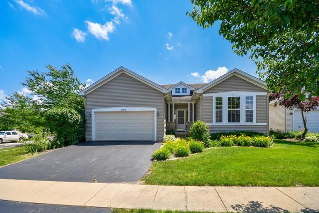 700 Ponds Court, Oswego, IL 60543 (MLS #09976744) :: Ani Real Estate