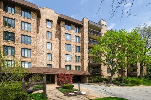3810 Mission Hills Road #304, Northbrook, IL 60062 (MLS #09976884) :: Ani Real Estate