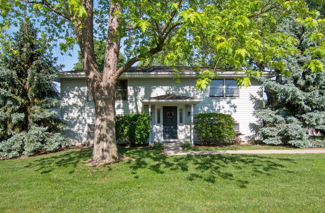 109 West Street, Minooka, IL 60447 (MLS #09977468) :: The Dena Furlow Team - Keller Williams Realty