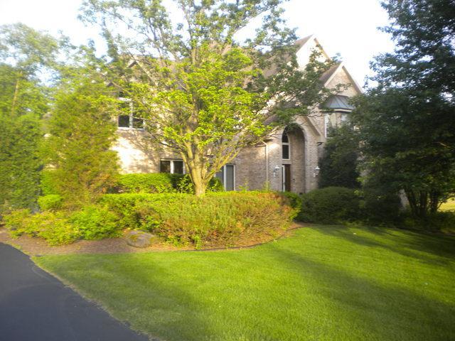 16431 S Kensington Drive S, Homer Glen, IL 60491 (MLS #09978386) :: The Dena Furlow Team - Keller Williams Realty