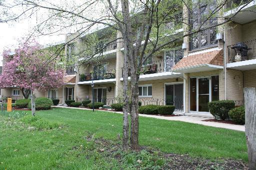 9514 S 86th Avenue #306, Hickory Hills, IL 60457 (MLS #09979416) :: The Wexler Group at Keller Williams Preferred Realty