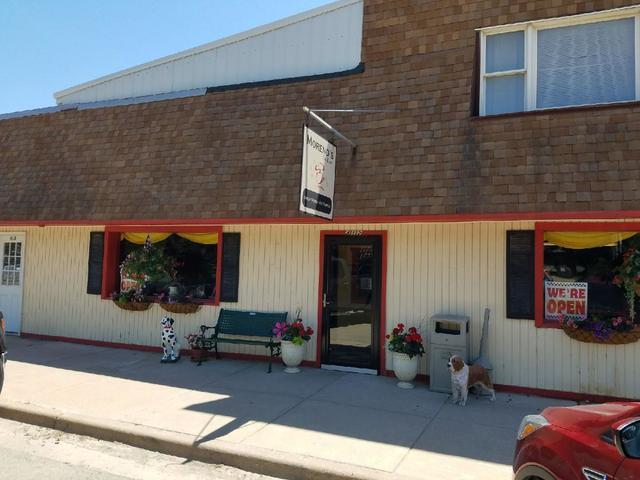 410 Main Street, Mcnabb, IL 61335 (MLS #09979559) :: The Dena Furlow Team - Keller Williams Realty