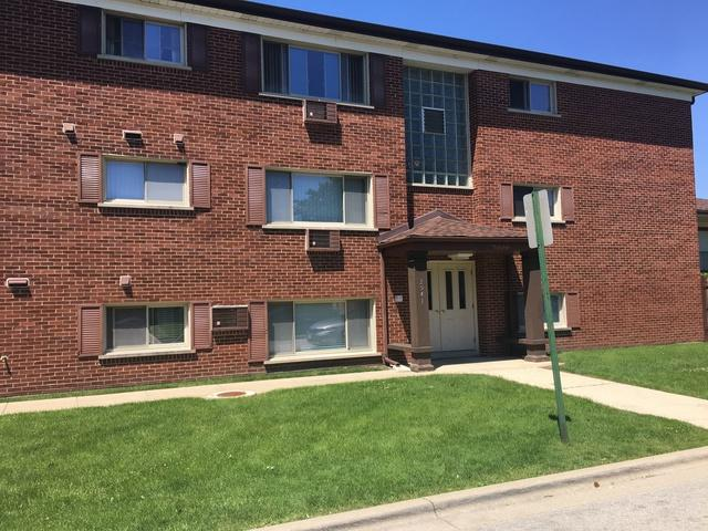 2541 Thatcher Avenue 2F, River Grove, IL 60171 (MLS #09979696) :: Ani Real Estate