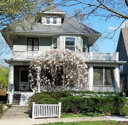231 7th Avenue, La Grange, IL 60525 (MLS #09979872) :: The Dena Furlow Team - Keller Williams Realty