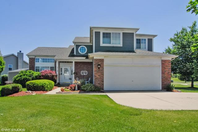216 Bristol Court, Sugar Grove, IL 60554 (MLS #09979949) :: Lewke Partners