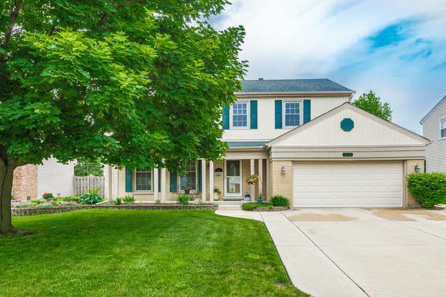 219 Lehigh Lane, Bloomingdale, IL 60108 (MLS #09980702) :: Ani Real Estate