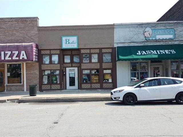209 Water Street, Wilmington, IL 60481 (MLS #09980956) :: Lewke Partners