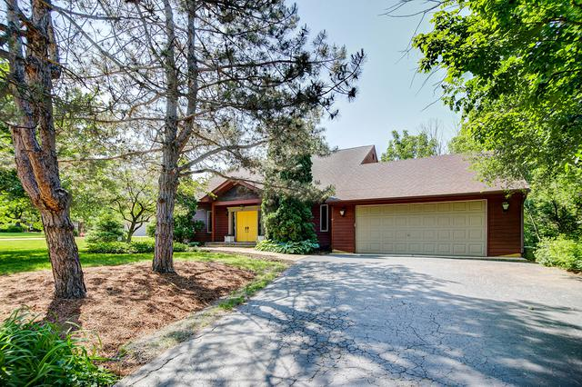 11435 Kluth Drive, Mokena, IL 60448 (MLS #09981575) :: The Wexler Group at Keller Williams Preferred Realty