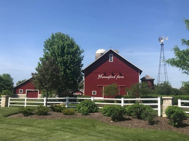 966 Wheatfield Avenue, Sugar Grove, IL 60554 (MLS #09982526) :: Ani Real Estate