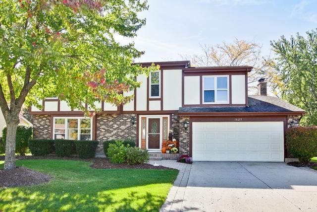 1625 Freeman Road, Hoffman Estates, IL 60192 (MLS #09982812) :: Lewke Partners