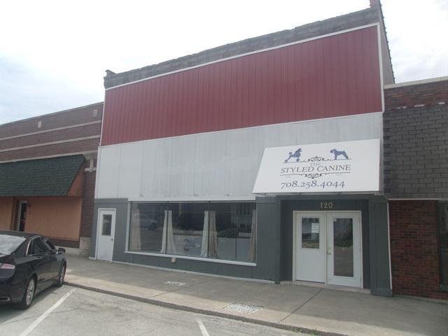 120 Main Street, Peotone, IL 60468 (MLS #09983027) :: Ani Real Estate