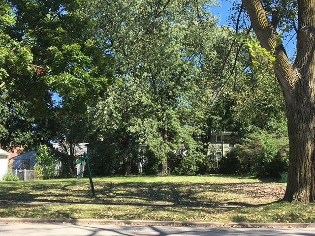 939 S Ashland Avenue, La Grange, IL 60525 (MLS #09983323) :: The Dena Furlow Team - Keller Williams Realty
