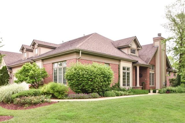40 Shadow Creek Circle, Palos Heights, IL 60463 (MLS #09983639) :: The Dena Furlow Team - Keller Williams Realty