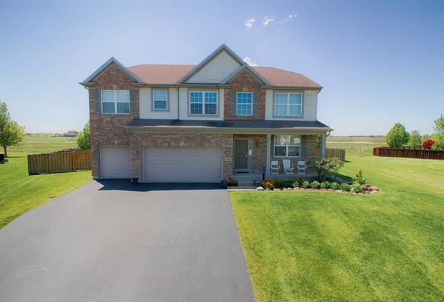 25415 Springview Court, Plainfield, IL 60586 (MLS #09984784) :: Lewke Partners