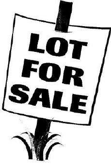 Lot 9 Hidden Grove Lane, Spring Valley, IL 61362 (MLS #09985010) :: Ani Real Estate