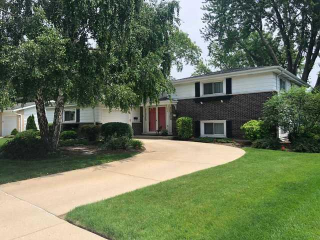 2341 N Lafayette Street, Arlington Heights, IL 60004 (MLS #09985104) :: The Dena Furlow Team - Keller Williams Realty