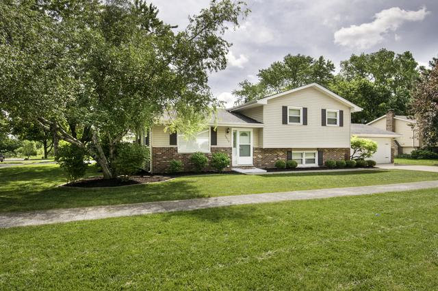 2010 Digby Drive, New Lenox, IL 60451 (MLS #09985255) :: The Wexler Group at Keller Williams Preferred Realty
