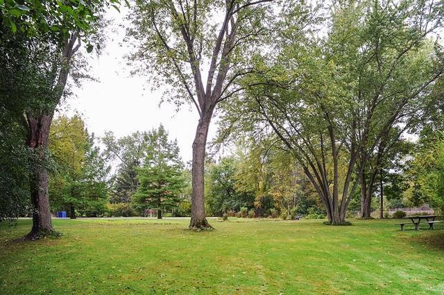 1870 Park Avenue West, Highland Park, IL 60035 (MLS #09985455) :: The Dena Furlow Team - Keller Williams Realty