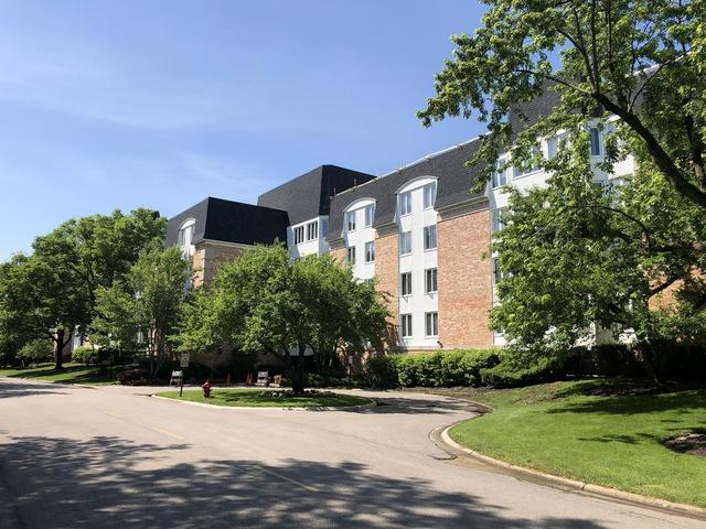 200 Lake Boulevard #408, Buffalo Grove, IL 60089 (MLS #09986033) :: The Jacobs Group