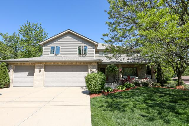 20215 Kluth Drive, Mokena, IL 60448 (MLS #09986151) :: The Wexler Group at Keller Williams Preferred Realty