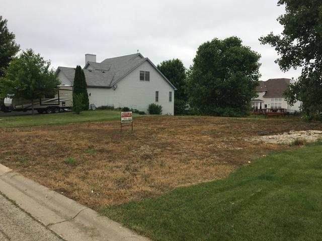 Lot 1 Snow Drive, Elburn, IL 60119 (MLS #09986172) :: The Dena Furlow Team - Keller Williams Realty
