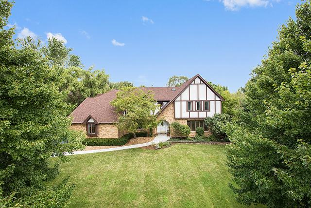 13208 Red Drive, Lemont, IL 60439 (MLS #09986497) :: The Wexler Group at Keller Williams Preferred Realty