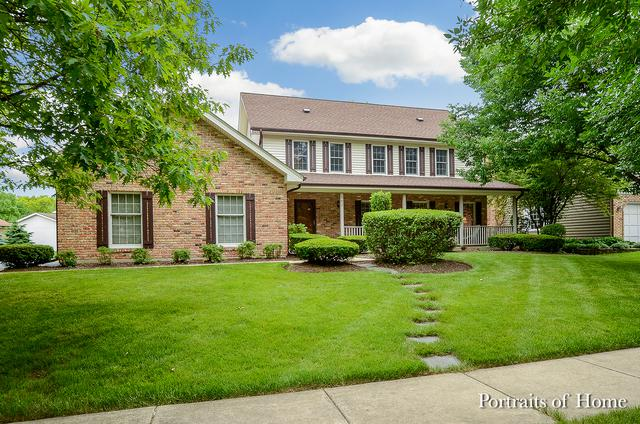 502 Chippewa Drive, Naperville, IL 60563 (MLS #09986623) :: The Dena Furlow Team - Keller Williams Realty