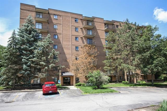6050 Lake Bluff Drive #201, Tinley Park, IL 60477 (MLS #09986657) :: The Wexler Group at Keller Williams Preferred Realty