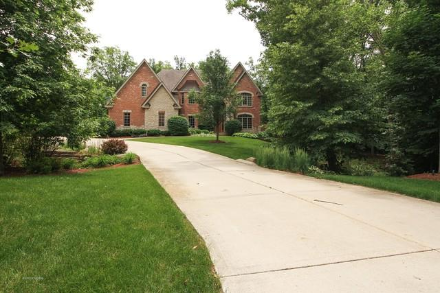 13111 Steeplechase Drive, New Lenox, IL 60451 (MLS #09987195) :: Ani Real Estate