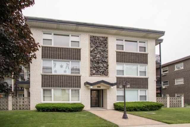 3011 Paris Avenue #106, River Grove, IL 60171 (MLS #09987503) :: Ani Real Estate