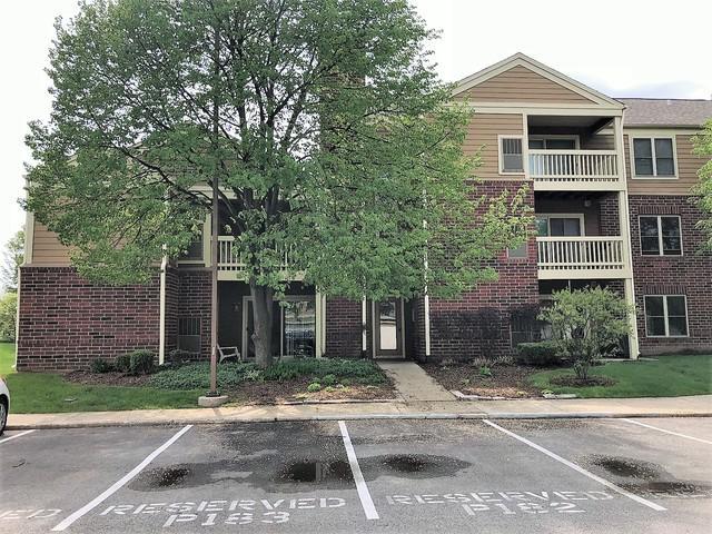 102 Glengarry Drive 6-204, Bloomingdale, IL 60108 (MLS #09987683) :: Ani Real Estate