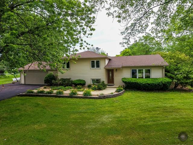 10s481 Whittington Lane, Naperville, IL 60564 (MLS #09987772) :: The Wexler Group at Keller Williams Preferred Realty