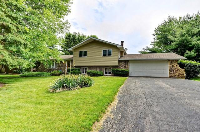 12949 S Elaine Drive, Plainfield, IL 60585 (MLS #09987858) :: The Wexler Group at Keller Williams Preferred Realty