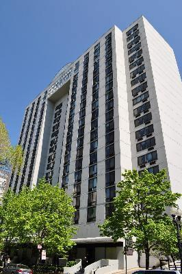 1221 N Dearborn Parkway 1007S, Chicago, IL 60610 (MLS #09988141) :: Property Consultants Realty