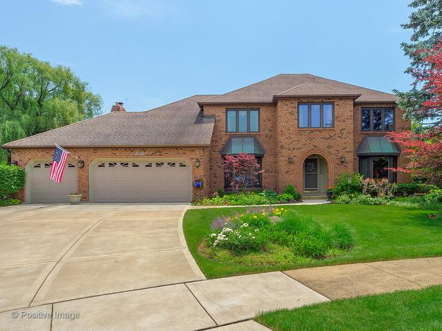 486 Chippewa Drive, Naperville, IL 60563 (MLS #09988177) :: The Dena Furlow Team - Keller Williams Realty