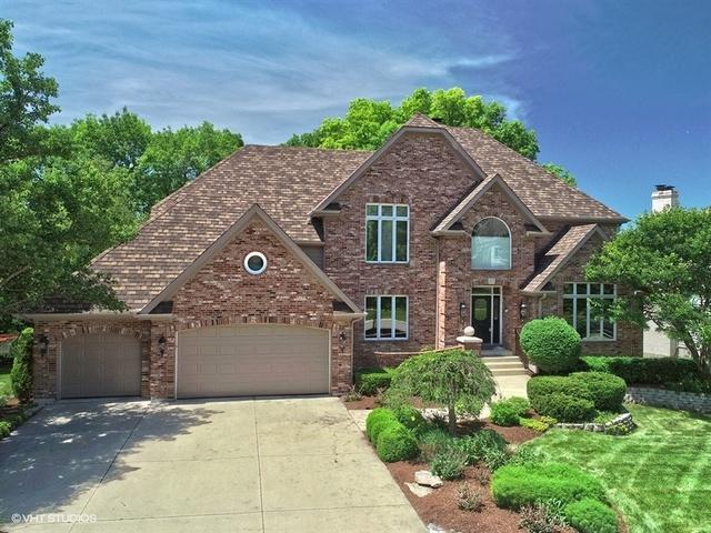 2211 River Woods Drive, Naperville, IL 60565 (MLS #09988306) :: The Wexler Group at Keller Williams Preferred Realty