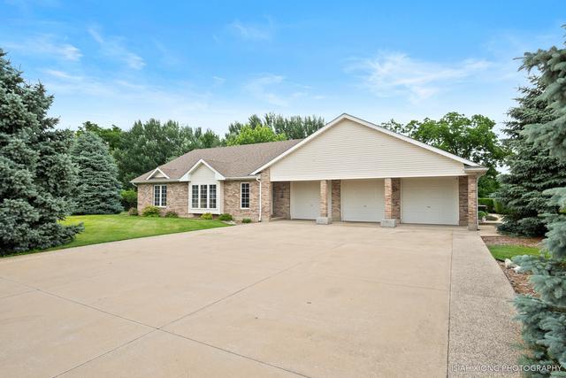 14958 Chais Court E, Hinckley, IL 60520 (MLS #09988307) :: Ani Real Estate