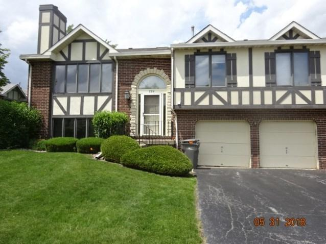 9314 Windsor Parkway #9314, Tinley Park, IL 60487 (MLS #09988333) :: The Wexler Group at Keller Williams Preferred Realty